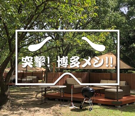 舞鶴公園西広場の写真