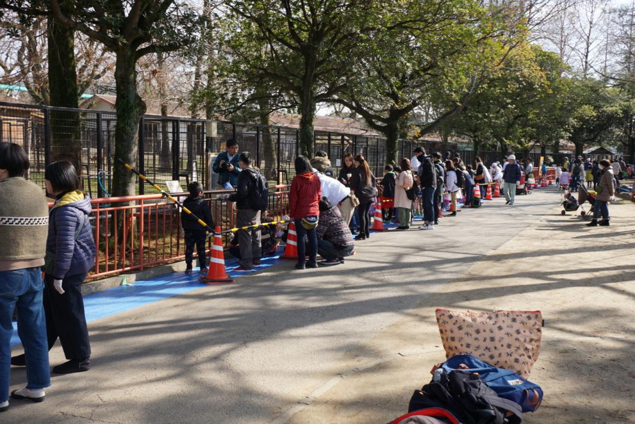 写真:一般参加者の方の長蛇の列