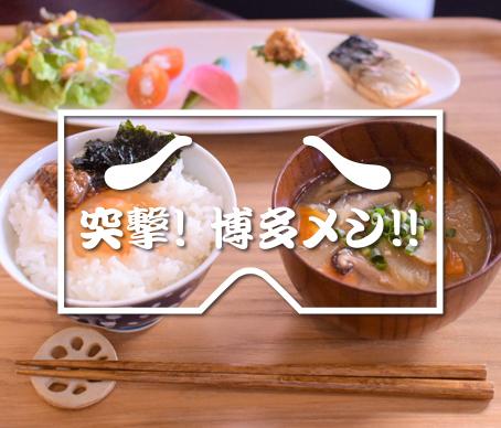 写真:白ご飯と味噌汁とおかずの朝ごはん
