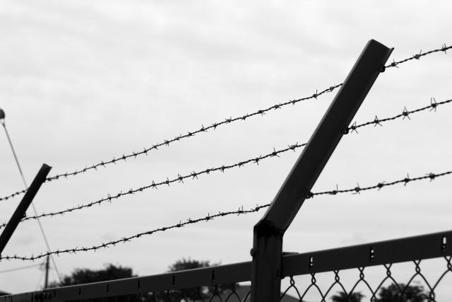写真:有刺鉄線