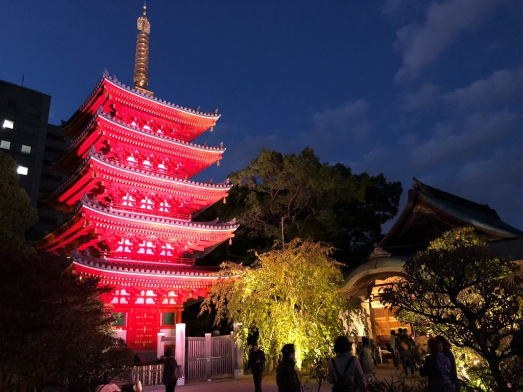 写真:東長寺-ライトアップ